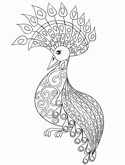 peacock coloring pages for adults coloring home