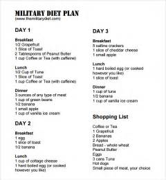 Diet Plan Template by Sle Diet Plan Template 9 Free Documents In Pdf Word