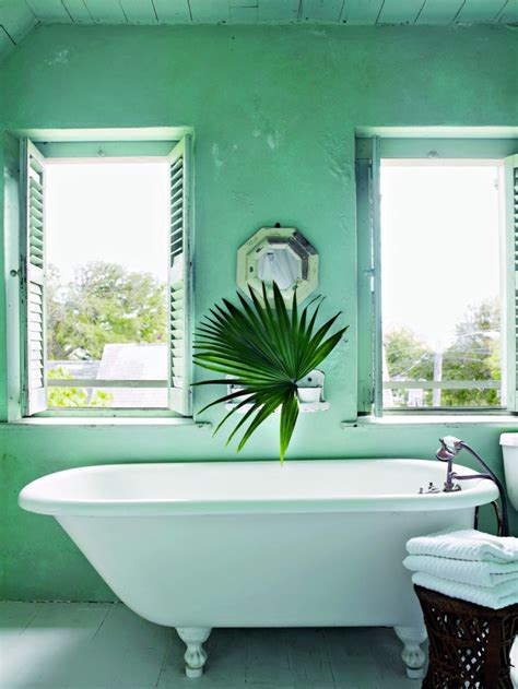tropical home decor  bring  jungle  thou swell