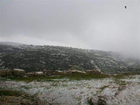 snow falls  damascus syria earth  sottnet