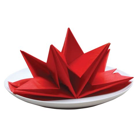 Fancy Paper Napkin Folding Ideas - fold paper napkins fancy 28 images bird of paradise