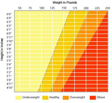 ideal weight chart ideal weight chart what is your ideal weight