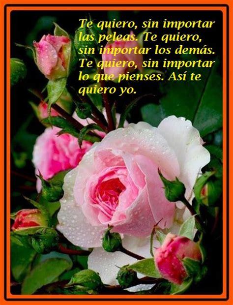 imagenes de amor y amistad flores imagenes de rosas de amor con frases bellas para dedicar