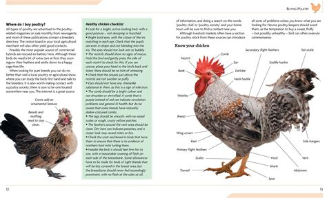 caring breeds mini encyclopedia of chicken breeds care a color directory of the most popular