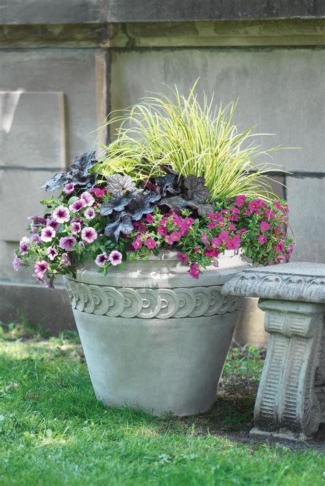glow in the paint dublin glow in the flower pots most popular home design