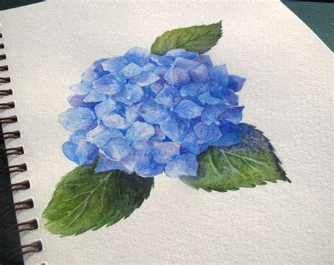 25 best ideas about hydrangea painting on painting flowers acrylic painting