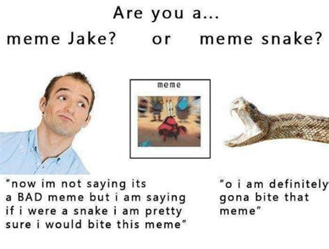 ã O Meme - 25 best memes about snake meme snake memes