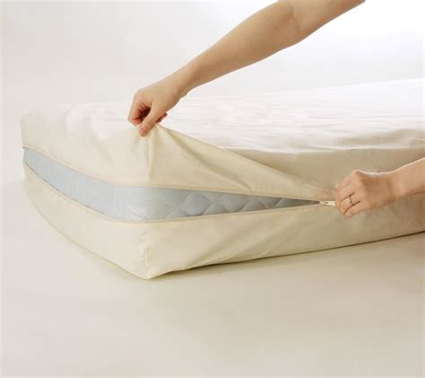 how long can bed bugs live without air use bed bug mattress covers to get rid of bugs