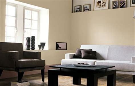 Délicieux Peinture Chambre Mat Ou Satin #4: 01A9010F03330194-photo-salon-peinture-sable-beige.jpg