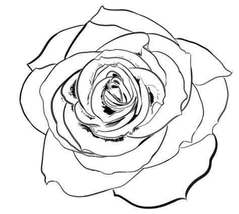 nothing but a rose free lineart by wolfride on deviantart