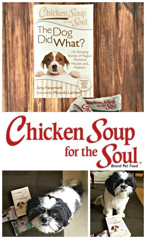 chicken soup for the soul food chicken soup for the soul pet food mypetismyhero