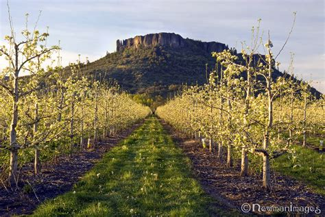 Table Rock Oregon by The Table Rocks In Ashland Oregon Localsguide