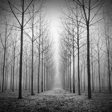 fotos en blanco y negro espectaculares incre 237 bles fotos blanco y negro taringa