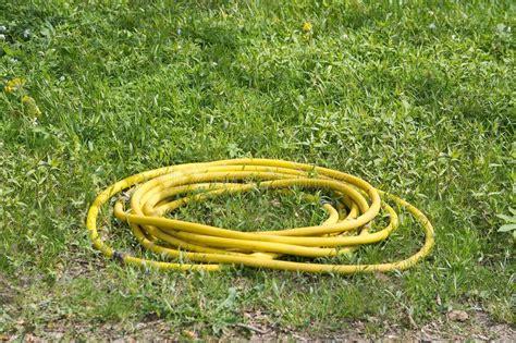 rolled garden hose stock image image  gardening