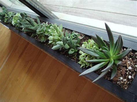 window sill planter succulent window planter home inspiration