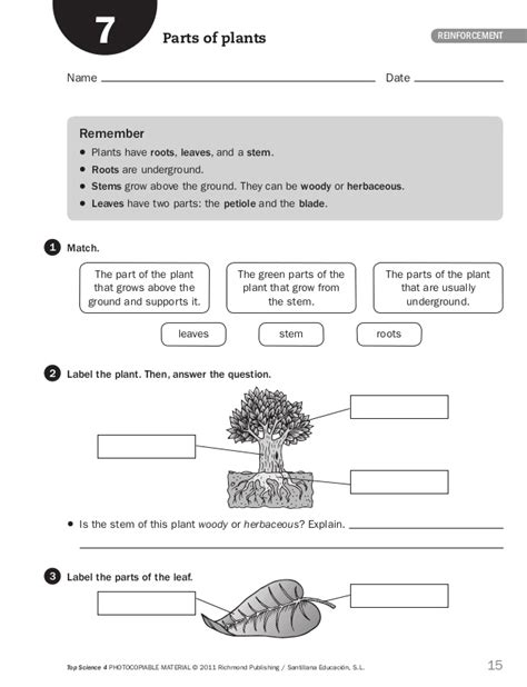 section 4 2 what shapes an ecosystem worksheet answers fichas inteligencia 4 186