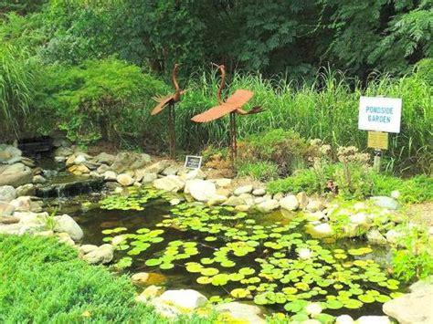 Wilson Botanical Gardens The Top 10 Things To Do Near S Barbecue Wilson Tripadvisor