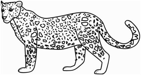 disegno di leopardo da colorare disegni da colorare e