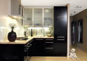 Modern Black Kitchen Cabinets Kitchen Ideas Black Cabinet Collections Info Home And Furniture Decoration Design Idea