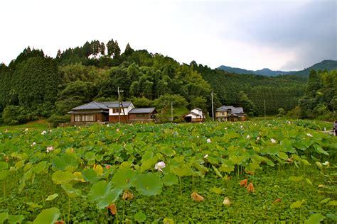 imagenes de japon rural 臼杵 usuki irukina com