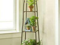 indoor plant stand images indoor plants indoor