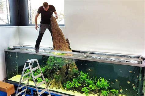 oliver knott aquarium  aquarium ideas