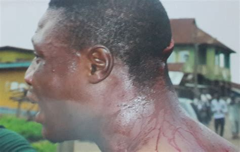 wounded eagle the politically correct of the in kentucky books others wounded in osun as political thugs