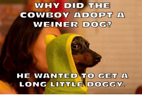 Weiner Dog Meme - why did the cowboy adopt a 830v adopt a weiner dog he