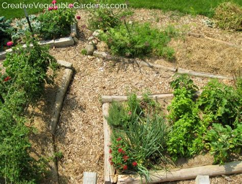 Creative Vegetable Gardener:Why mulch is the ultimate