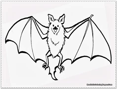 bat boat coloring page bat color page fruit bat worksheet education pages for bat