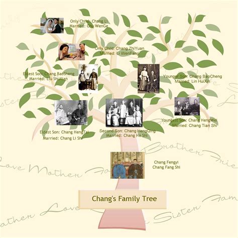 family tree template scrapbook family tree template family tree template dreamweaver