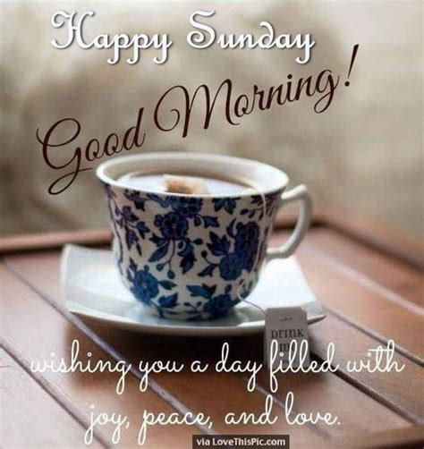 libro have you filled a good morning wishes on sunday pictures images page 9