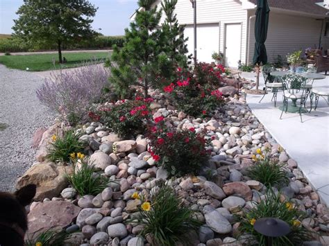 rock garden bed rock bed garden ideas
