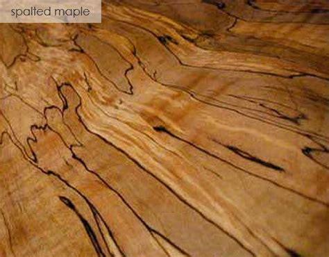 species spotlight spalted maple tom s workbench