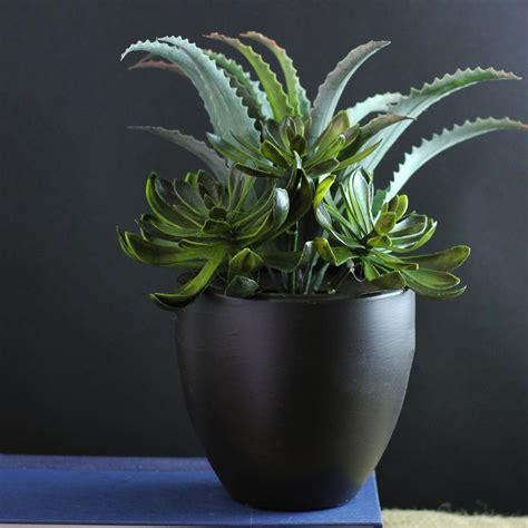 northlight indoor artificial succulent plants 32037458 the home depot