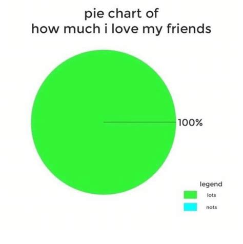 Meme Chart - pie chart of how much i love my friends 100 legend lots