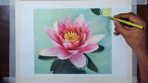 watercolor water lily tutorial drawing a water lily prismacolor pencils youtube