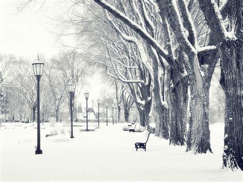 imagenes de invierno snowy park winter snow scenes wallpaper 1152x864 download