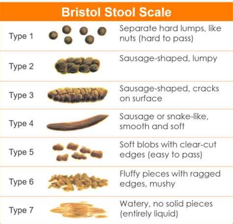 What Causes Bulky Stools by Types Of Stools Constipation Pictures To Pin On
