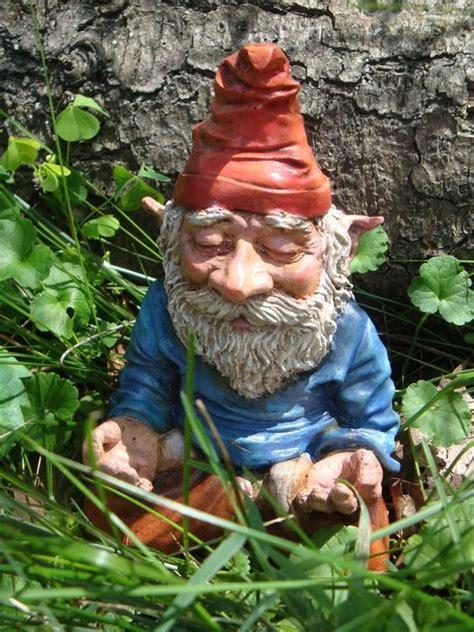 cute garden gnomes gnomes funny garden gnomes and garden gnomes on pinterest