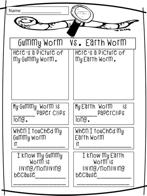 earthworm dissection worksheet elementary 170 best science plants worms images on