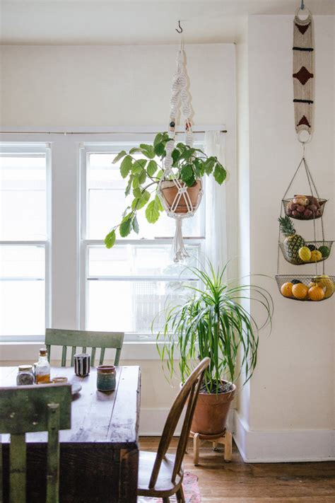 plants in the kitchen bursting with plants a 1910 portland foursquare for a