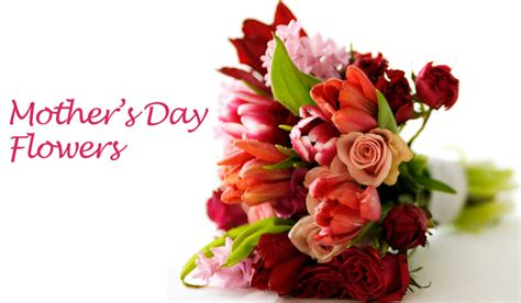 Official S Day Flower Mothers Day Flower Selections To Make On This