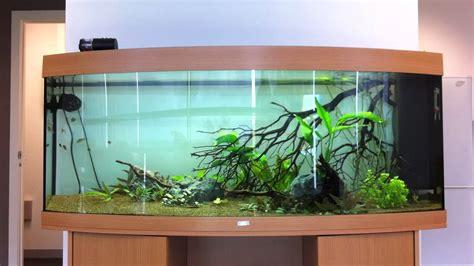 360 Liter Aquarium by Juwel Vision 450 Aquarium Update 4 12 11