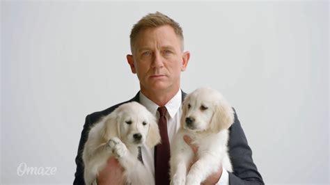 daniel craig puppies want to date bond daniel craig offers himself and an aston martin