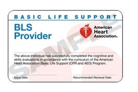 15 1805 Bls Healthcare Provider Cards 24 Bls Healthcare Provider Card Template