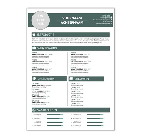 famous curriculum vitae template word free download vignette