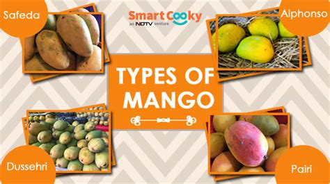 Mango Ma6521l 10 Original 10 popular varieties of mangoes in india how to identify them ndtv food