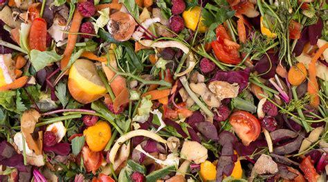 spreco alimentare nel mondo spreco alimentare in italia una petizione per combatterlo