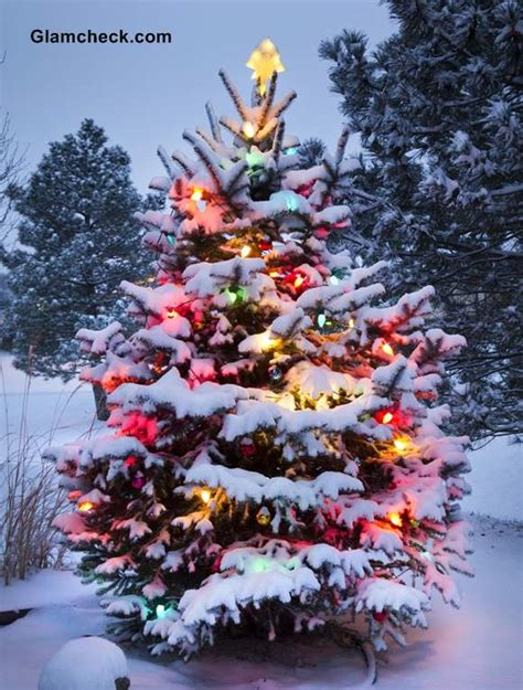 outdoor weihnachtsbaum tree decoration ideas